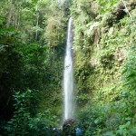 B2 - Banos Jungle Day Trip - June 27, 2015 (105)