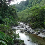 B2 - Banos Jungle Day Trip - June 27, 2015 (111)