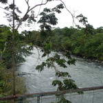 B2 - Banos Jungle Day Trip - June 27, 2015 (53)