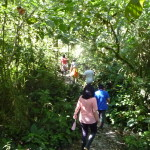B2 - Banos Jungle Day Trip - June 27, 2015 (92)
