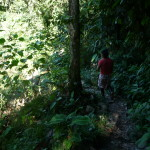 B2 - Banos Jungle Day Trip - June 27, 2015 (93)