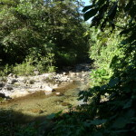 B2 - Banos Jungle Day Trip - June 27, 2015 (94)