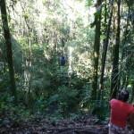 B2 - Banos Jungle Day Trip - June 27, 2015 (98)