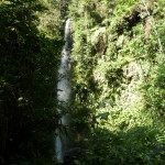 B2 - Banos Jungle Day Trip - June 27, 2015 (99)
