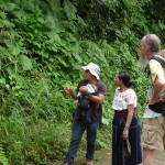 D3 - Cacao Jungle Trip, Guatemala - Sept 10, 2015 (47)