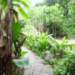 D4 - Around San Marcos, Guatemala - Sept 15, 2015 (12)