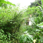 D4 - Around San Marcos, Guatemala - Sept 15, 2015 (13)